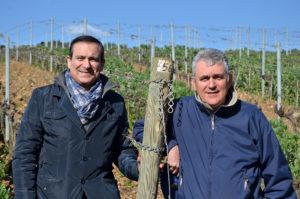 Flavio e Luca Nuti in Vigna